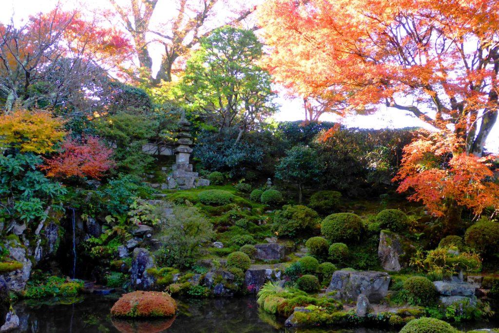 京都市左京区大原にある実光院の契心園の紅葉(秋・11月)