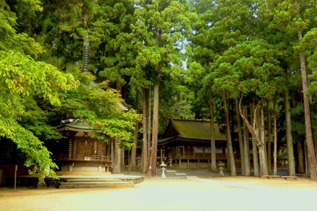 和歌山県伊都郡高野町にある金剛峯寺の山王院と六角経蔵(夏・8月)