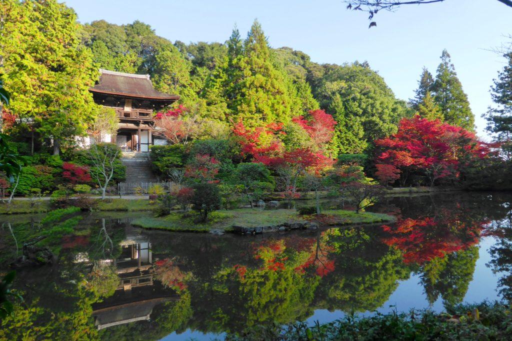 奈良市にある圓成寺の楼門と庭園の紅葉(秋・11月)