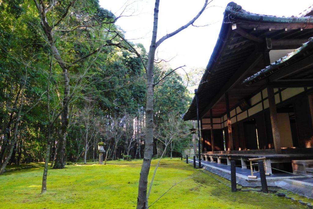 京都市北区にある高桐院の庭(冬・2月)