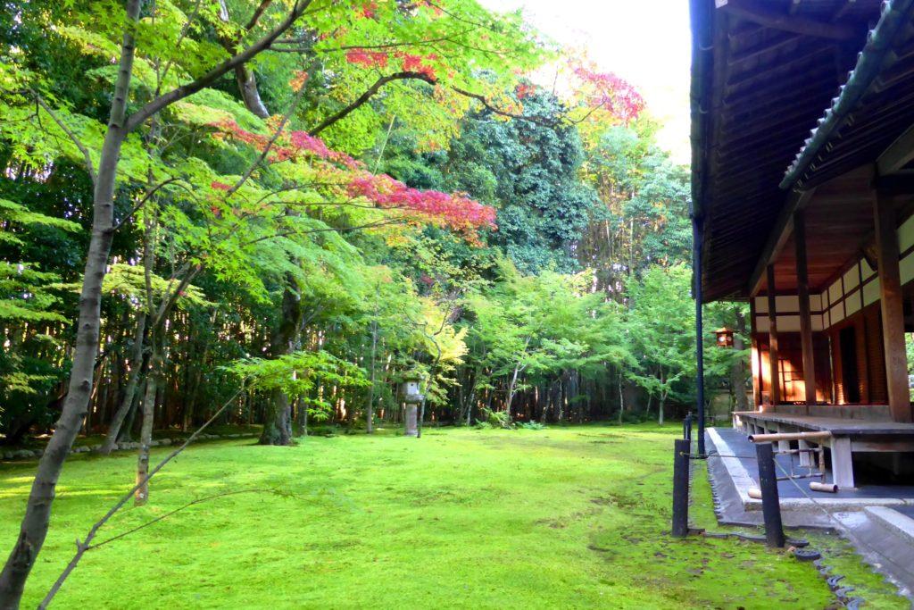 京都市北区にある高桐院の庭