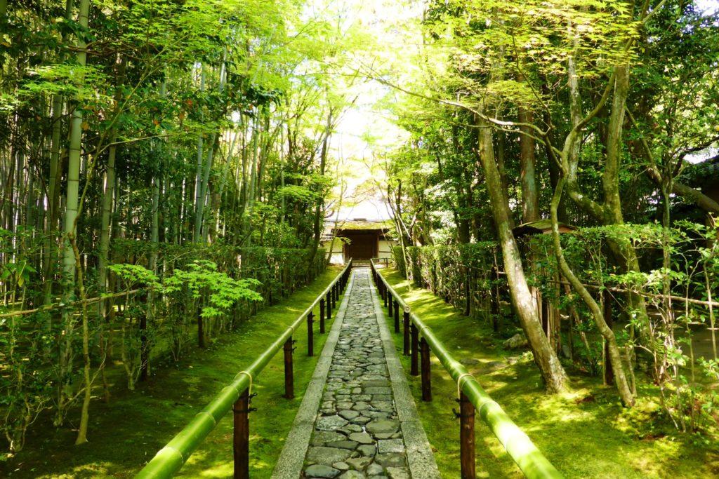 京都市北区にある高桐院の境内(春・4月)