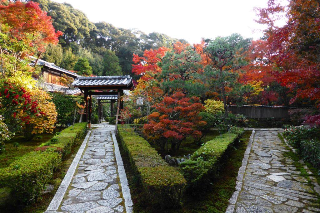 京都市東山区にある即宗院の庭園の紅葉(秋・11月)
