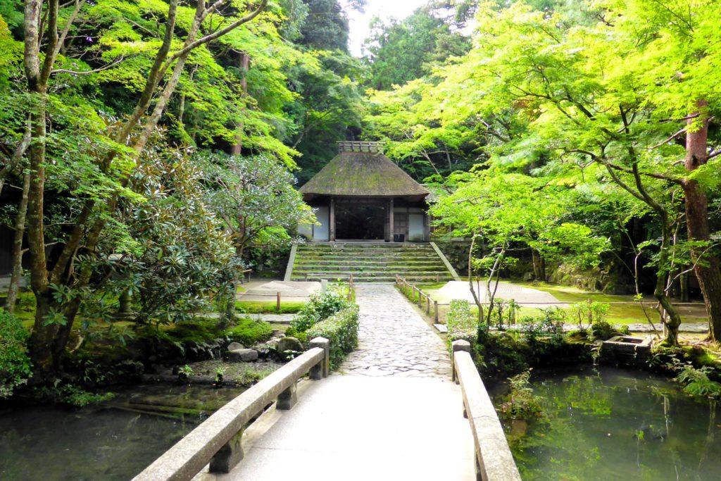 京都市左京区にある法然院の境内(秋・10月)