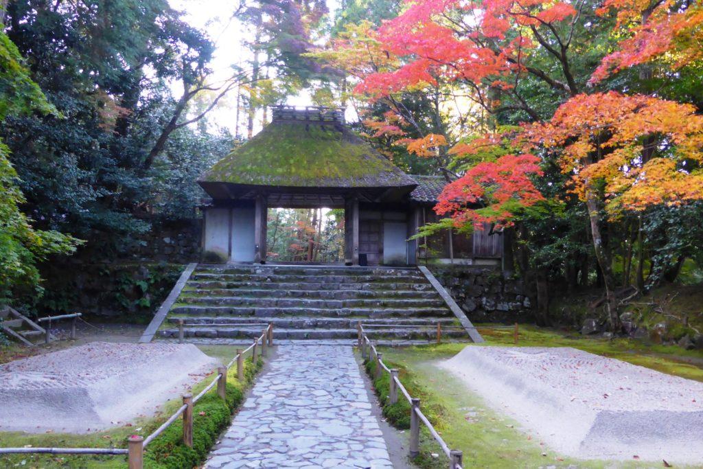 京都市左京区にある法然院の山門と境内の紅葉(秋・11月)