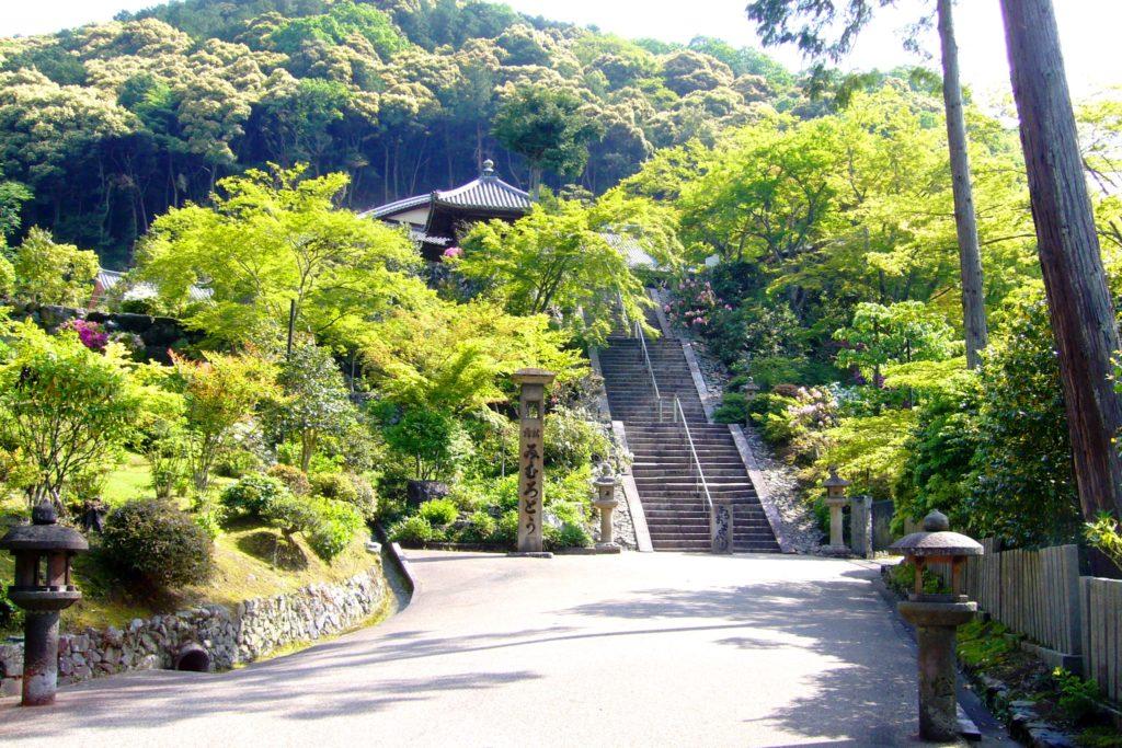 京都府宇治市の三室戸寺の境内