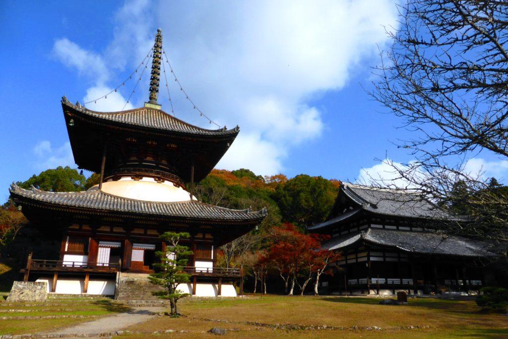 和歌山県岩出市にある根来寺の大塔と大傳法堂と紅葉(冬・12月)