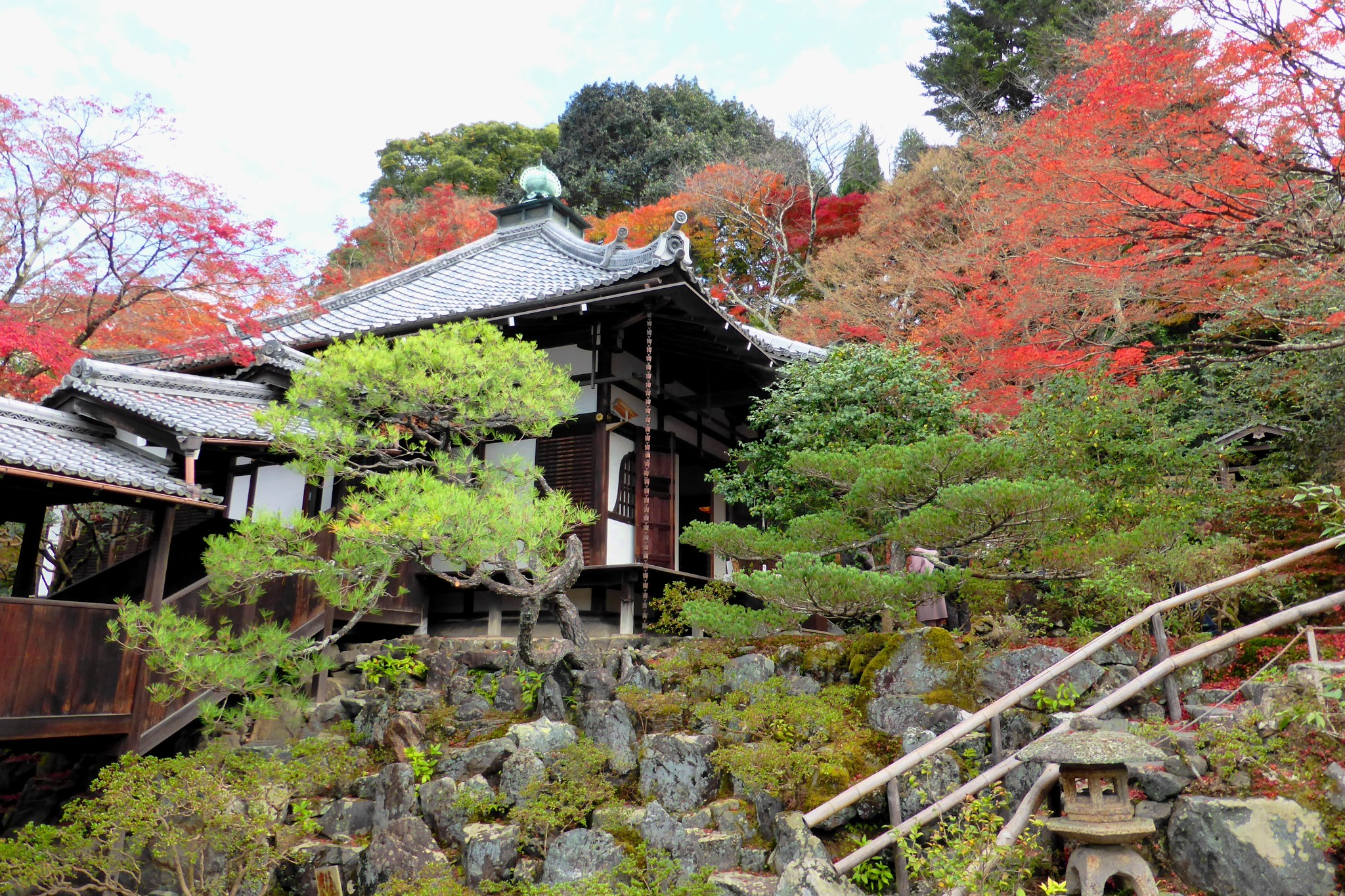 京都市左京区にある霊鑑寺の境内