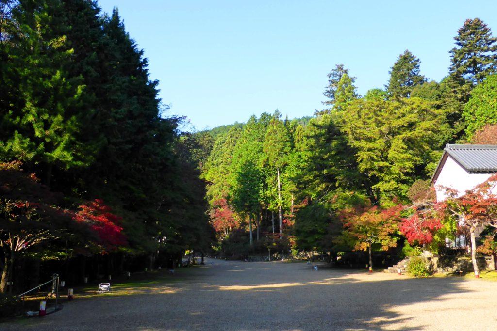 京都市右京区にある神護寺の境内と紅葉(秋・11月)