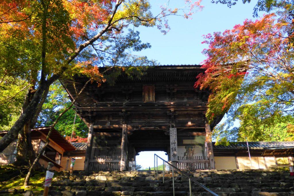 京都市右京区にある神護寺の楼門と紅葉(秋・11月)