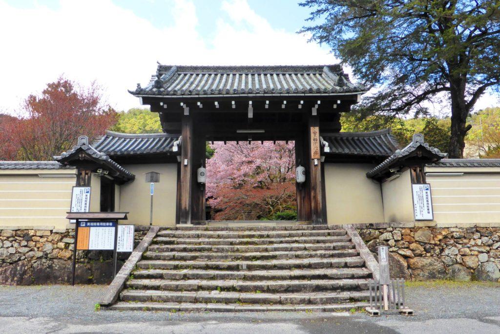 京都市左京区にある実相院の山門(春・4月)