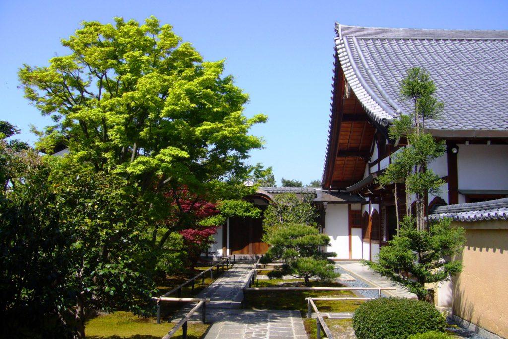 京都市北区にある興臨院の境内(春・4月)