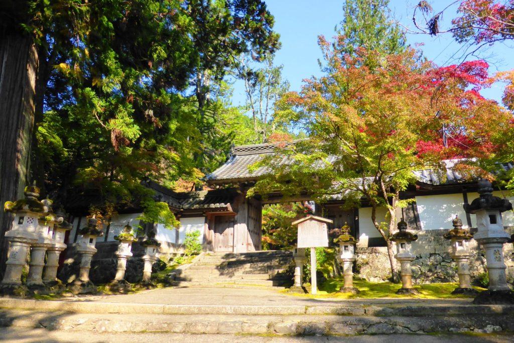 京都市右京区にある西明寺の表門と紅葉