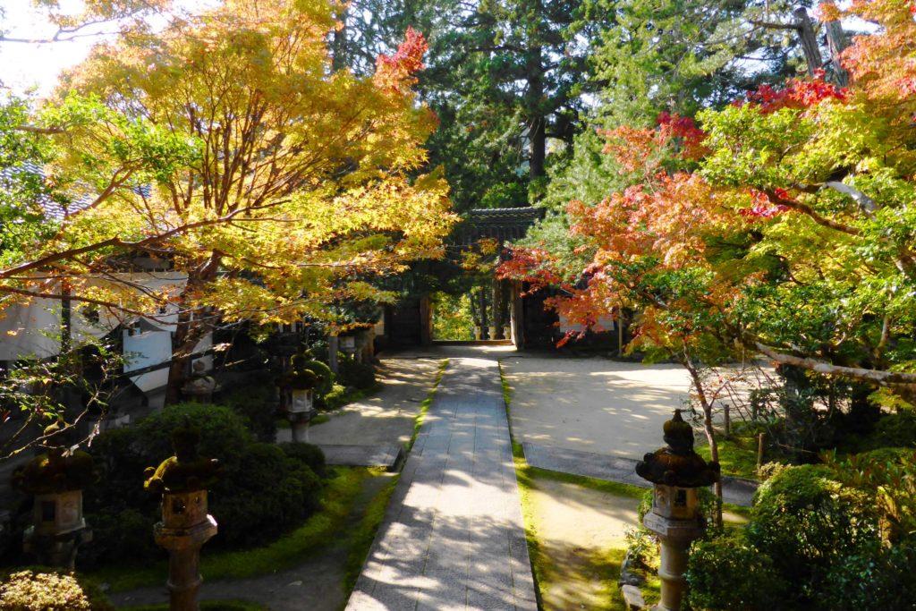 京都市右京区にある西明寺の境内の紅葉(秋・11月)