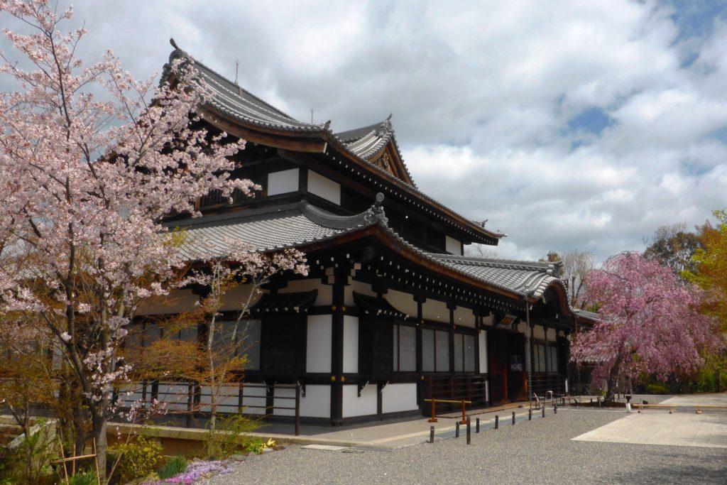 京都市山科区にある将軍塚青龍殿の境内の桜(春・4月)