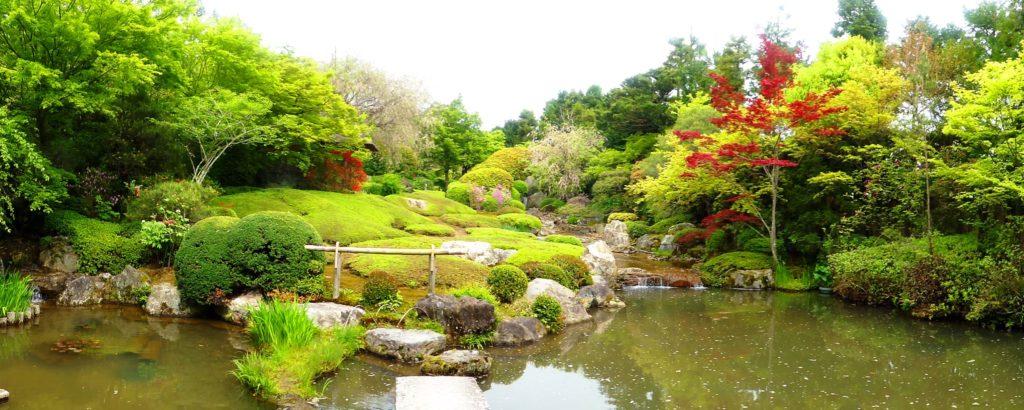京都市右京区にある退蔵院の池泉回遊式庭園である余香苑の桜とつつじ(春・4月)