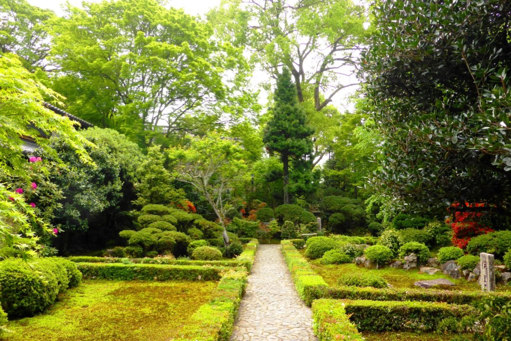 京都市左京区にある安楽寺の境内(春・5月)