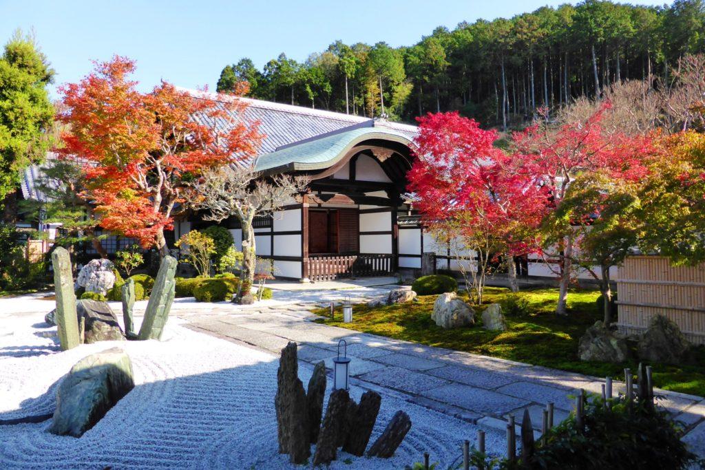 京都市左京区にある圓光寺の奔龍庭の紅葉